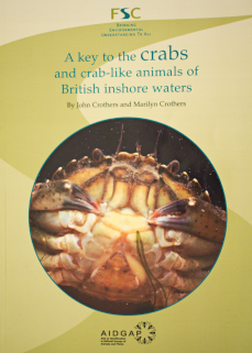 key to crabs